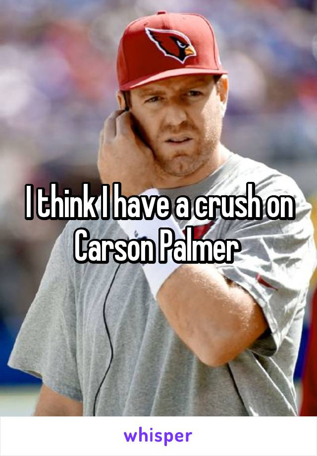 I think I have a crush on Carson Palmer