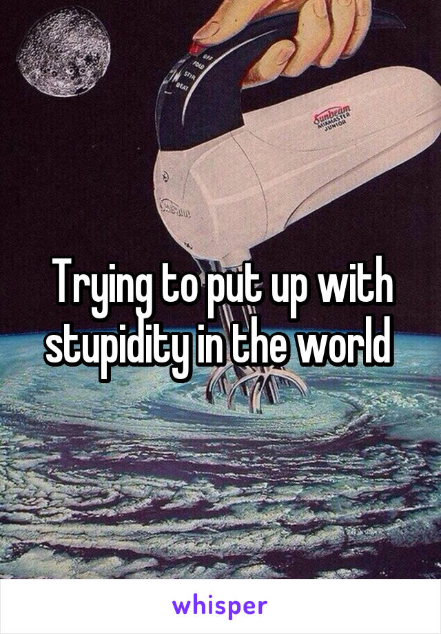 Trying to put up with stupidity in the world
