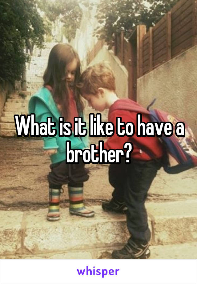 What is it like to have a brother?