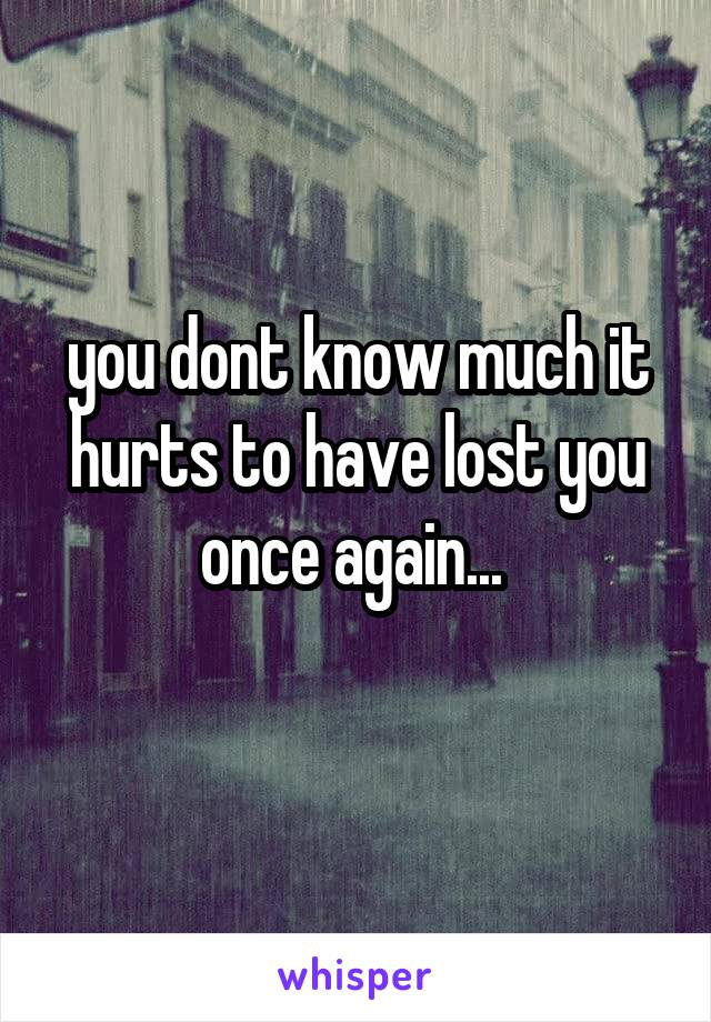you dont know much it hurts to have lost you once again...