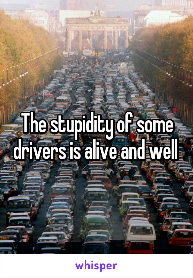 The stupidity of some drivers is alive and well
