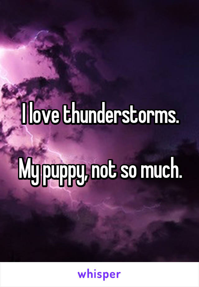 I love thunderstorms.  My puppy, not so much.