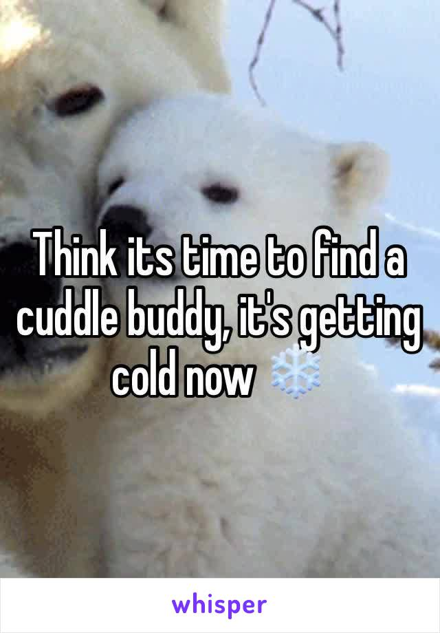 Think its time to find a cuddle buddy, it's getting cold now ❄️
