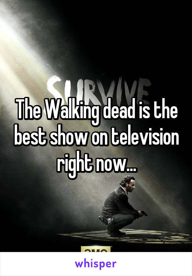 The Walking dead is the best show on television right now...