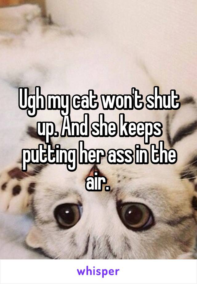 Ugh my cat won't shut up. And she keeps putting her ass in the air.