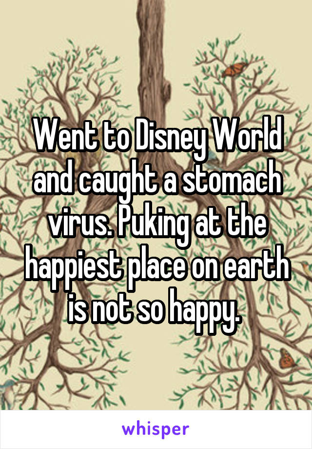 Went to Disney World and caught a stomach virus. Puking at the happiest place on earth is not so happy.