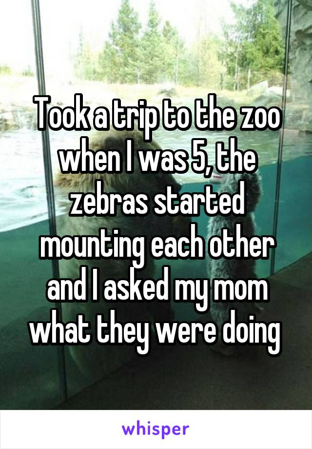 Took a trip to the zoo when I was 5, the zebras started mounting each other and I asked my mom what they were doing