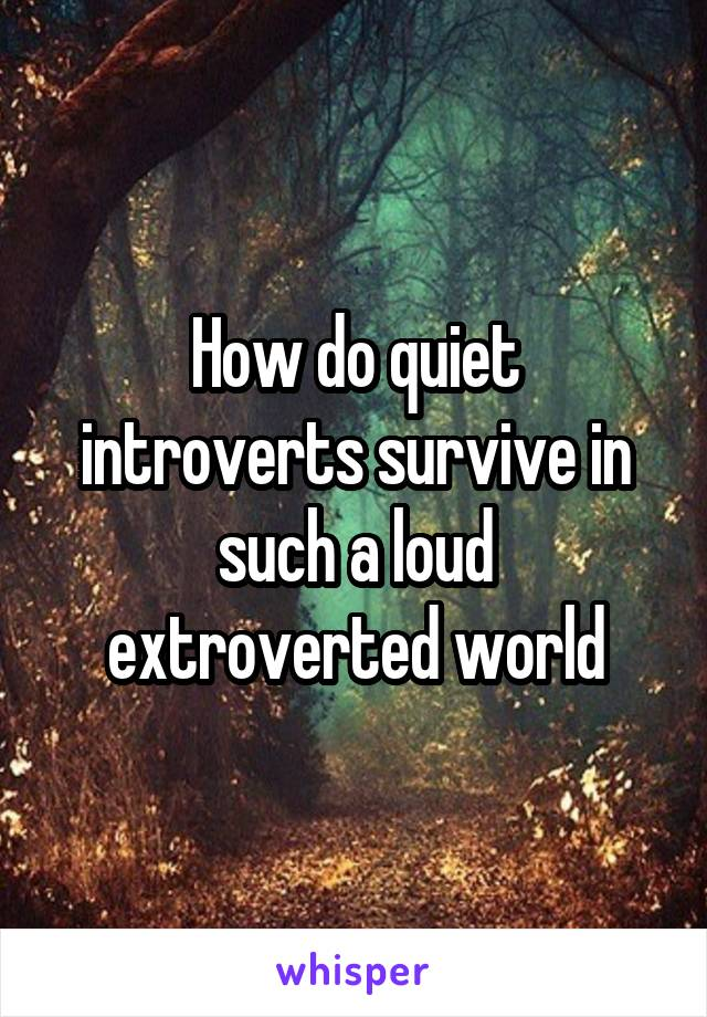 How do quiet introverts survive in such a loud extroverted world