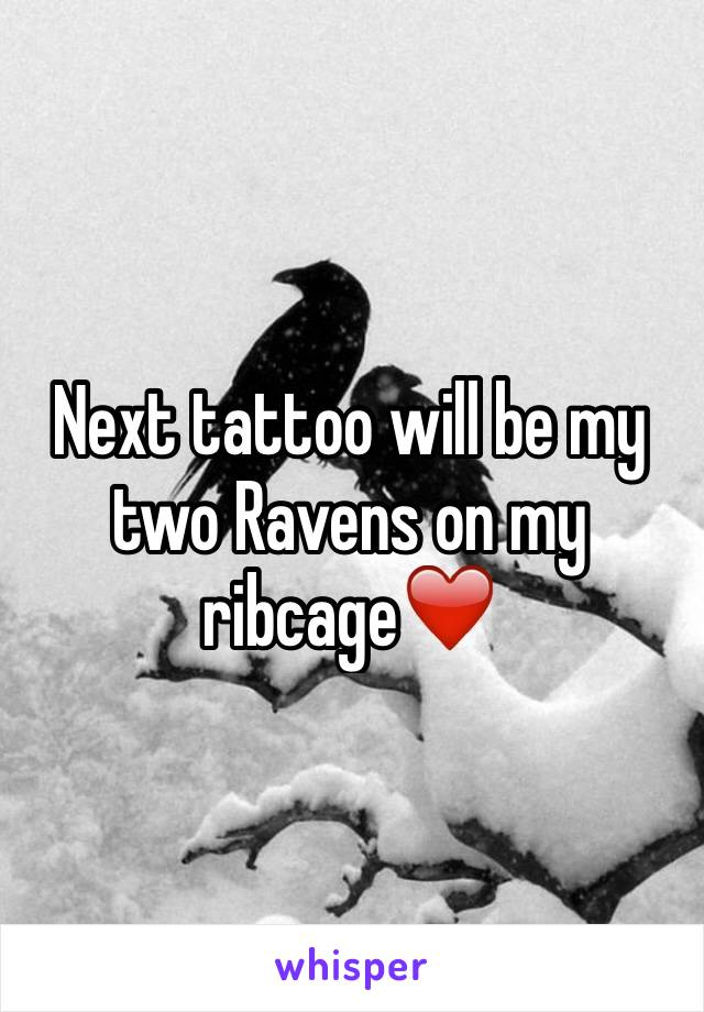 Next tattoo will be my two Ravens on my ribcage❤️
