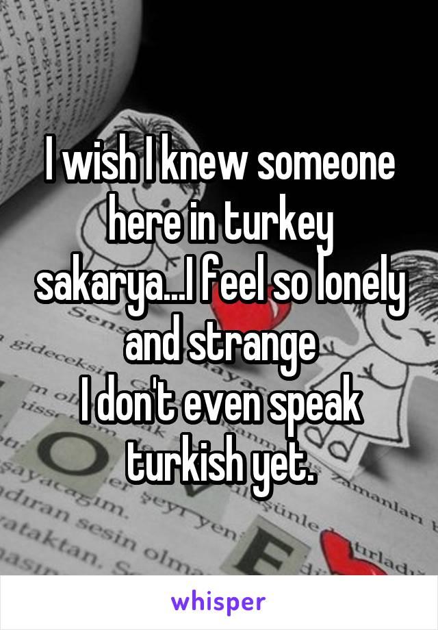 I wish I knew someone here in turkey sakarya...I feel so lonely and strange I don't even speak turkish yet.