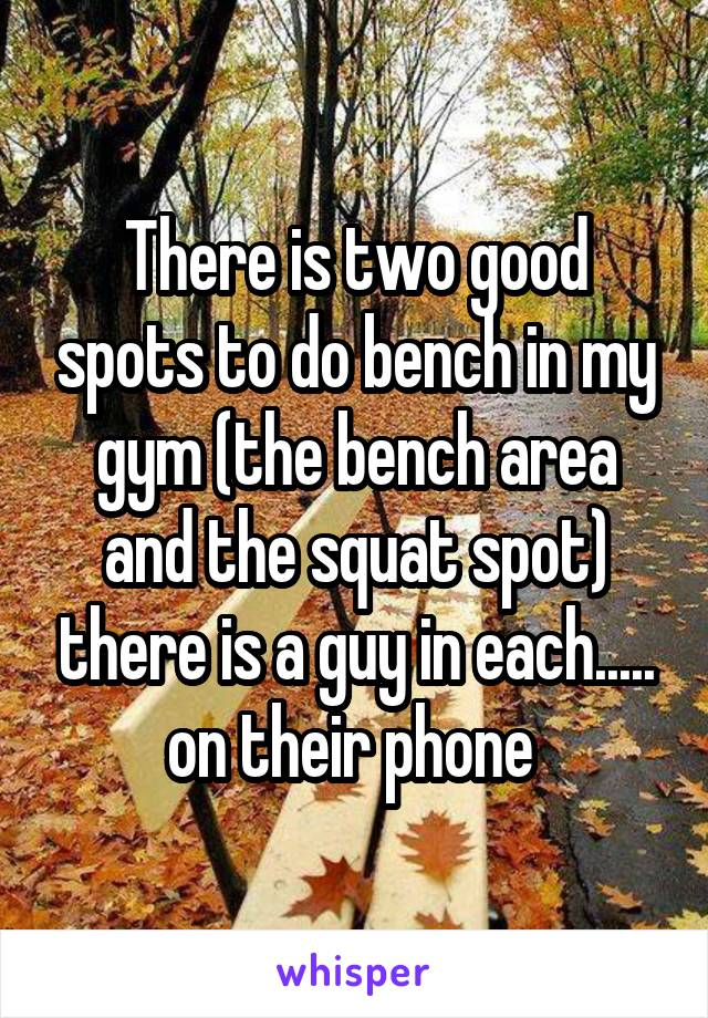 There is two good spots to do bench in my gym (the bench area and the squat spot) there is a guy in each..... on their phone