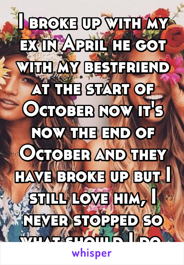 I broke up with my ex in April he got with my bestfriend at the start of October now it's now the end of October and they have broke up but I still love him, I never stopped so what should I do