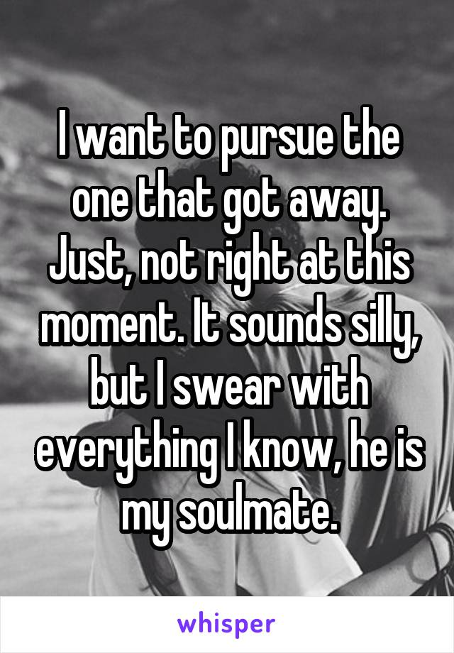 I want to pursue the one that got away. Just, not right at this moment. It sounds silly, but I swear with everything I know, he is my soulmate.