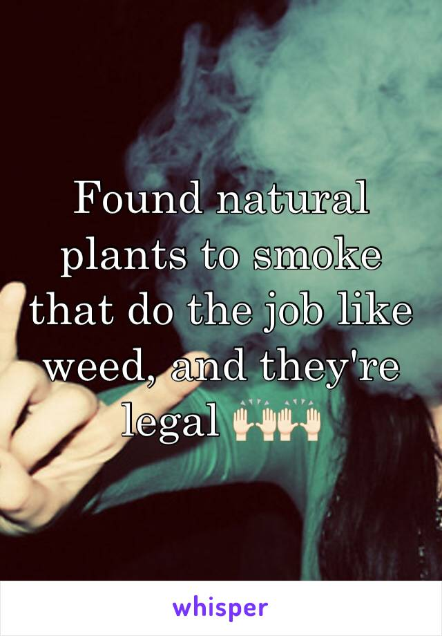 Found natural plants to smoke that do the job like weed, and they're legal 🙌🏻🙌🏻