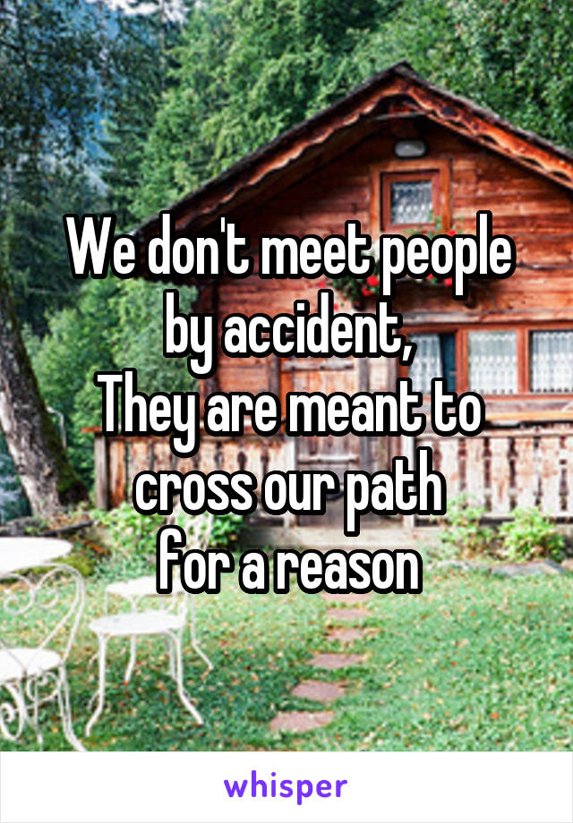 We don't meet people by accident, They are meant to cross our path for a reason