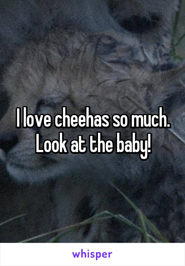 I love cheehas so much. Look at the baby!