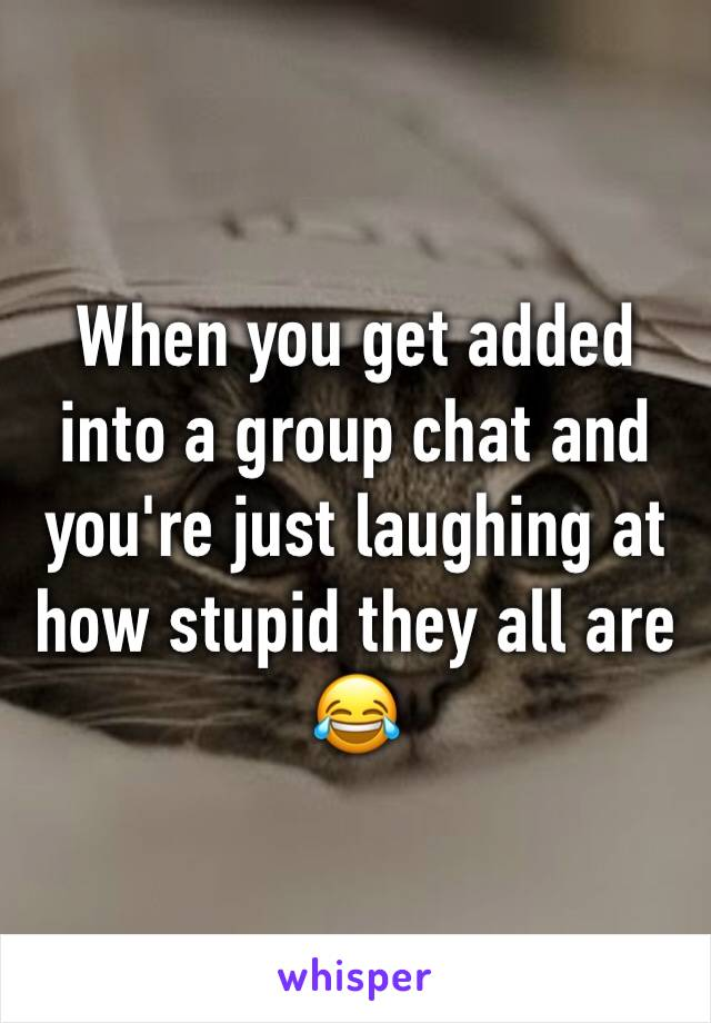 When you get added into a group chat and you're just laughing at how stupid they all are 😂