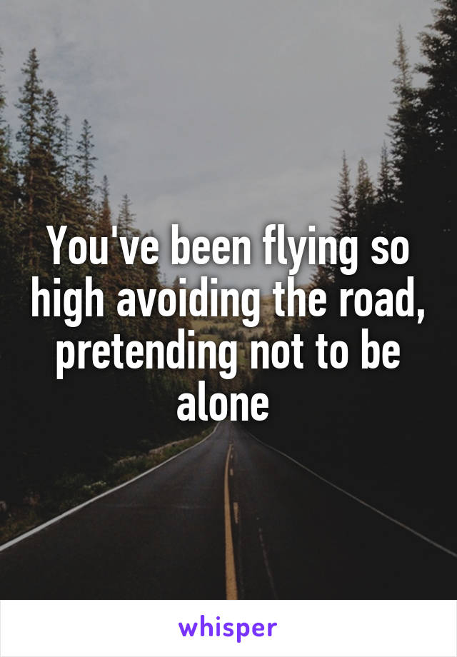 You've been flying so high avoiding the road, pretending not to be alone