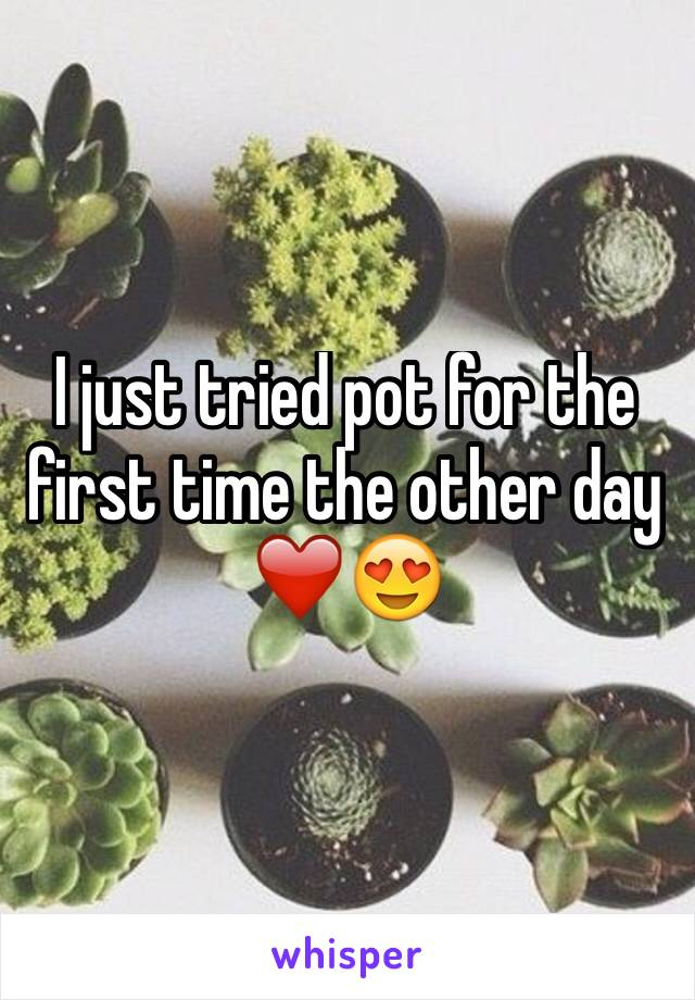 I just tried pot for the first time the other day ❤️😍