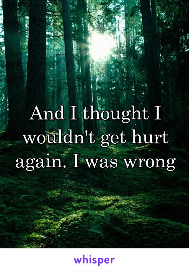 And I thought I wouldn't get hurt again. I was wrong