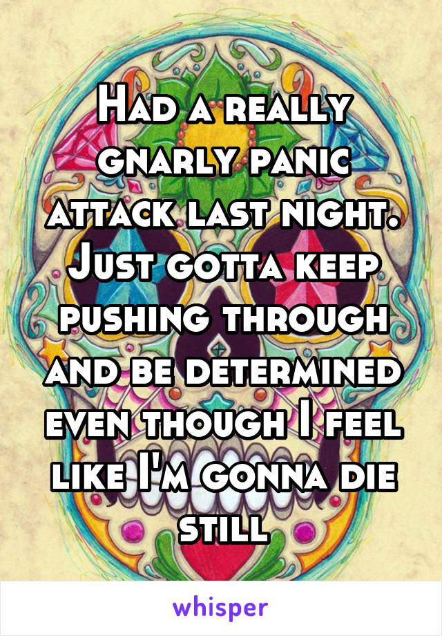 Had a really gnarly panic attack last night. Just gotta keep pushing through and be determined even though I feel like I'm gonna die still