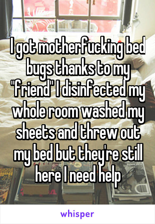 "I got motherfucking bed bugs thanks to my ""friend"" I disinfected my whole room washed my sheets and threw out my bed but they're still here I need help"