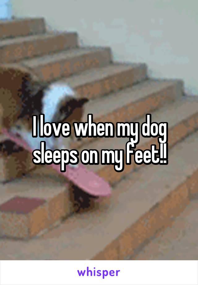 I love when my dog sleeps on my feet!!