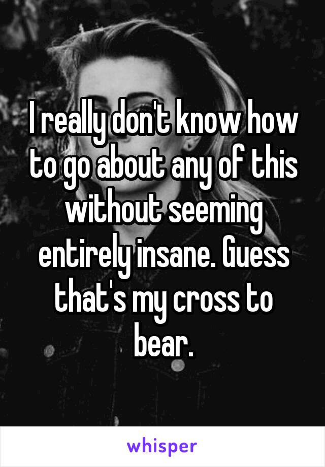 I really don't know how to go about any of this without seeming entirely insane. Guess that's my cross to bear.