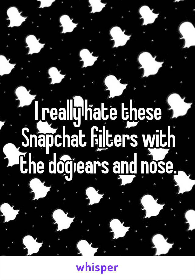 I really hate these Snapchat filters with the dog ears and nose.