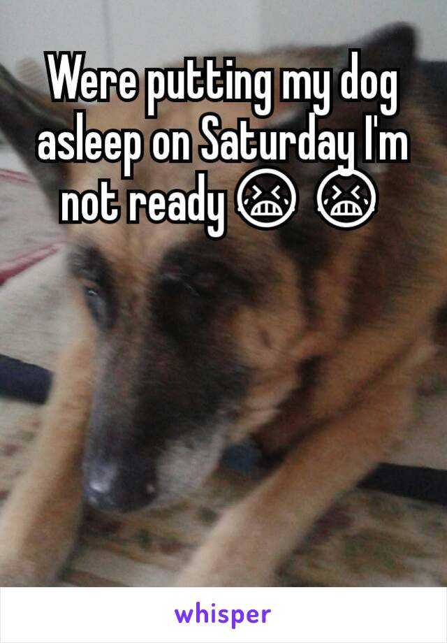 Were putting my dog asleep on Saturday I'm not ready😭😭