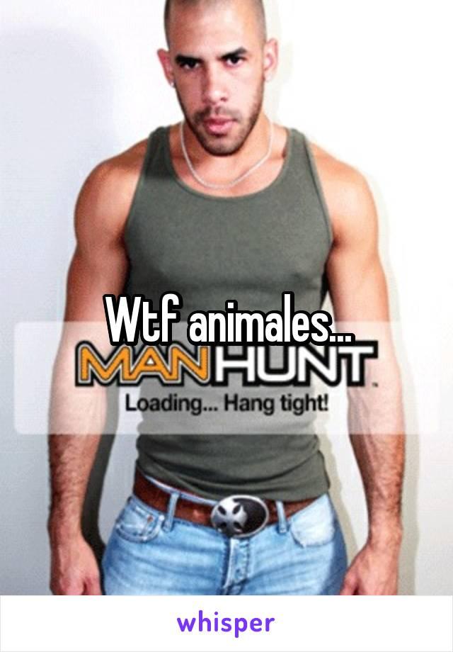 Wtf animales...
