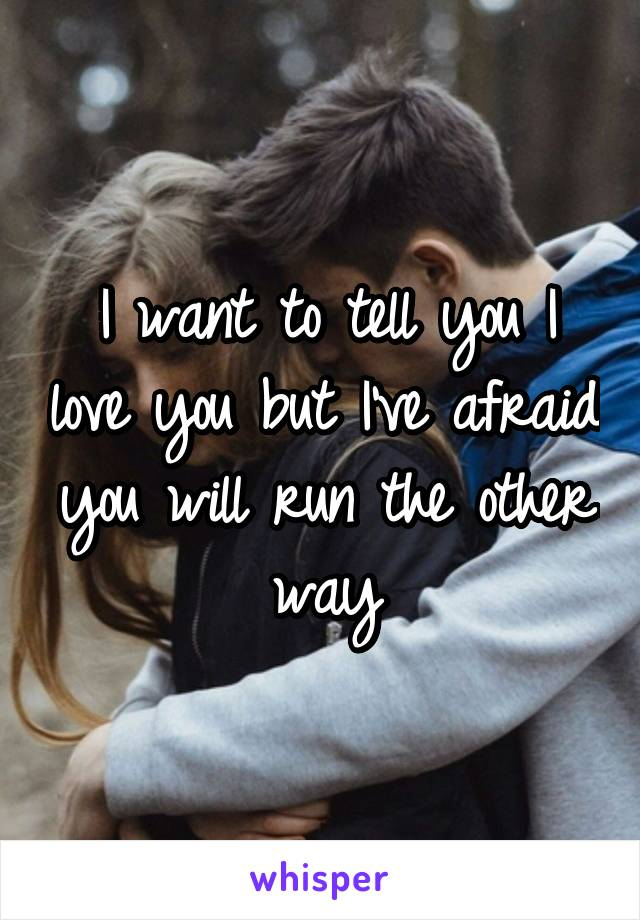 I want to tell you I love you but I've afraid you will run the other way