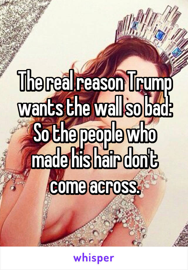 The real reason Trump wants the wall so bad: So the people who made his hair don't come across.