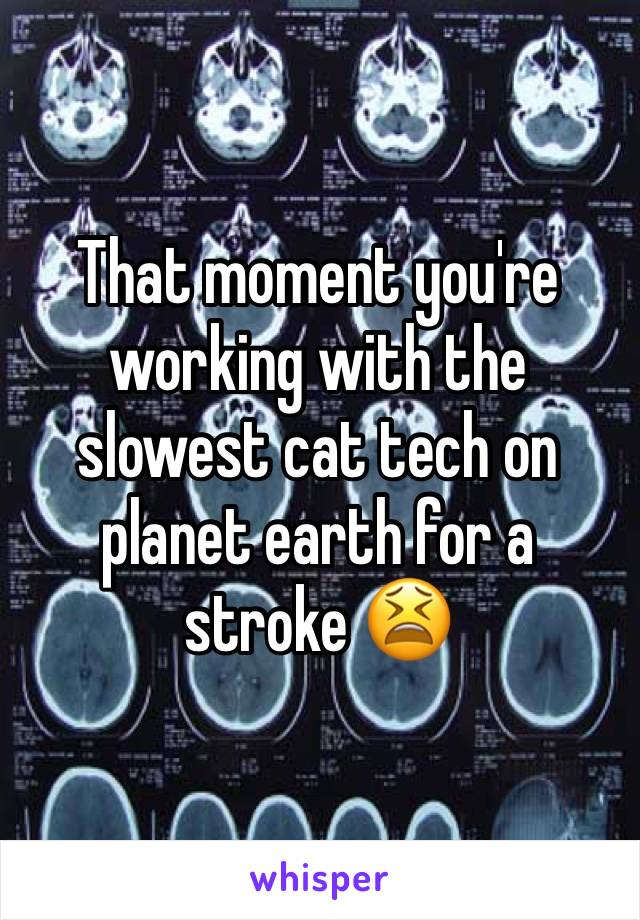 That moment you're working with the slowest cat tech on planet earth for a stroke 😫