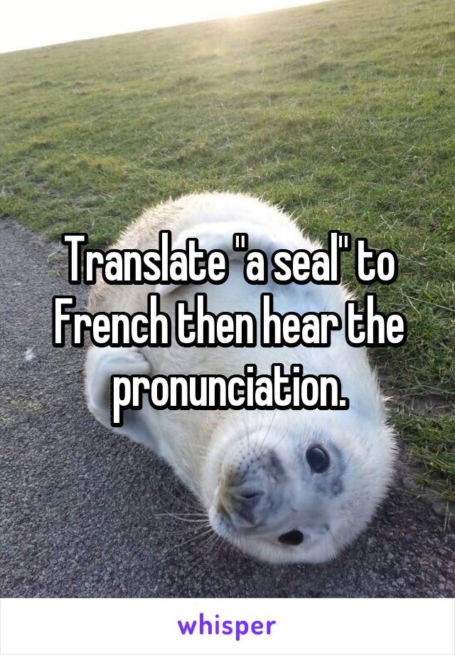 "Translate ""a seal"" to French then hear the pronunciation."
