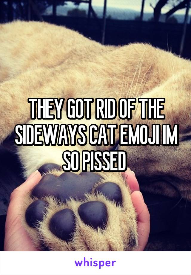 THEY GOT RID OF THE SIDEWAYS CAT EMOJI IM SO PISSED