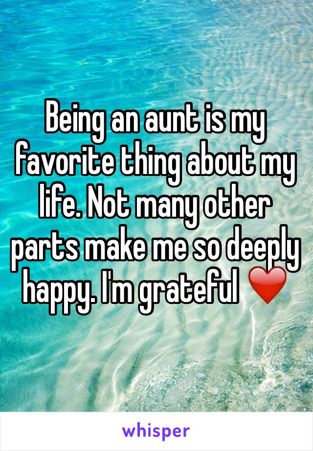 Being an aunt is my favorite thing about my life. Not many other parts make me so deeply happy. I'm grateful ❤️