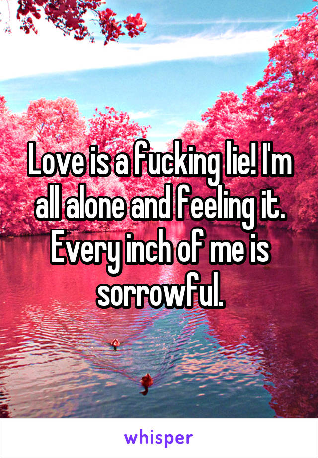 Love is a fucking lie! I'm all alone and feeling it. Every inch of me is sorrowful.