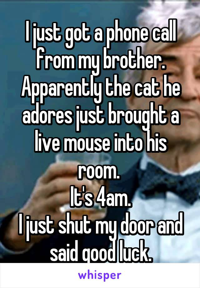 I just got a phone call from my brother. Apparently the cat he adores just brought a live mouse into his room.  It's 4am. I just shut my door and said good luck.