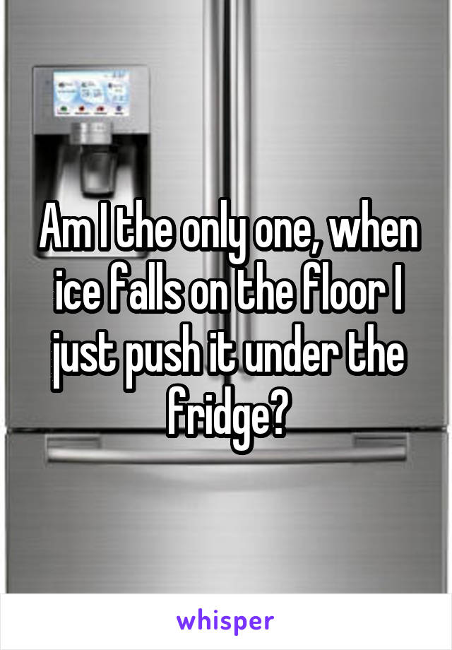 Am I the only one, when ice falls on the floor I just push it under the fridge?