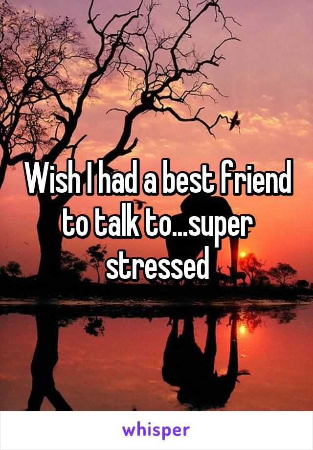 Wish I had a best friend to talk to...super stressed