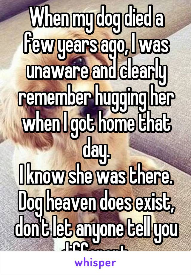 When my dog died a few years ago, I was unaware and clearly remember hugging her when I got home that day. I know she was there. Dog heaven does exist, don't let anyone tell you different.