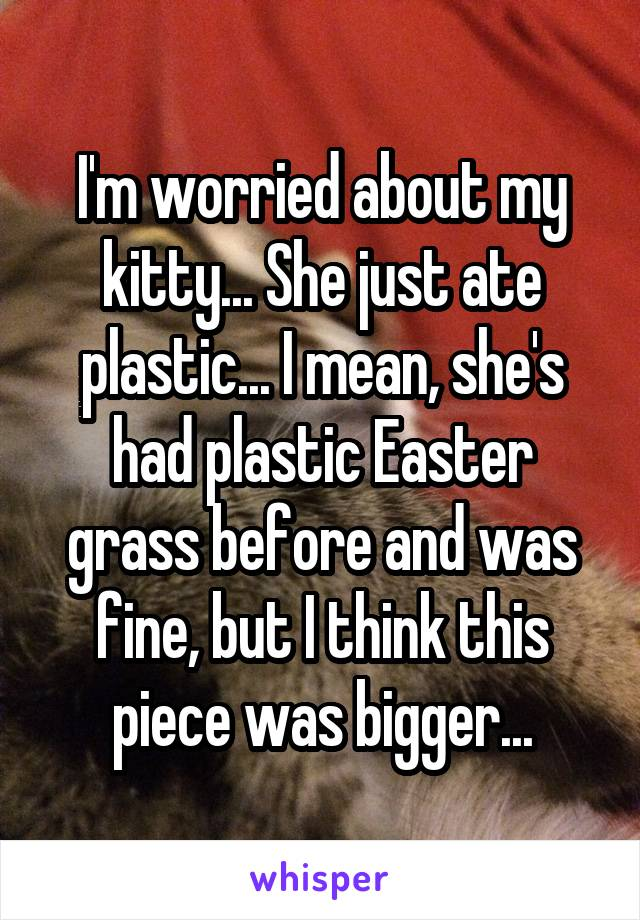 I'm worried about my kitty... She just ate plastic... I mean, she's had plastic Easter grass before and was fine, but I think this piece was bigger...
