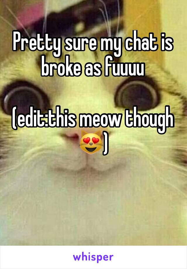 Pretty sure my chat is broke as fuuuu  (edit:this meow though 😻)