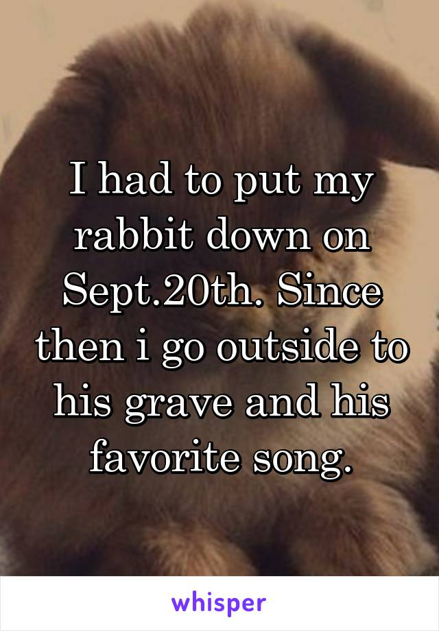 I had to put my rabbit down on Sept.20th. Since then i go outside to his grave and his favorite song.