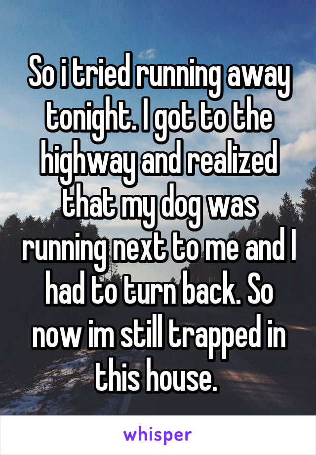 So i tried running away tonight. I got to the highway and realized that my dog was running next to me and I had to turn back. So now im still trapped in this house.