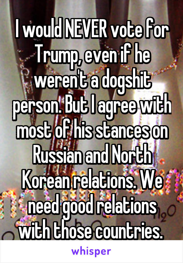 I would NEVER vote for Trump, even if he weren't a dogshit person. But I agree with most of his stances on Russian and North Korean relations. We need good relations with those countries.