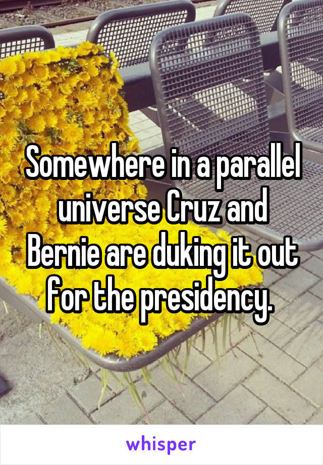 Somewhere in a parallel universe Cruz and Bernie are duking it out for the presidency.