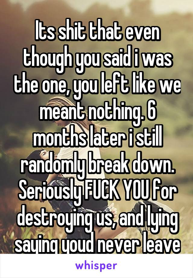 Its shit that even though you said i was the one, you left like we meant nothing. 6 months later i still randomly break down. Seriously FUCK YOU for destroying us, and lying saying youd never leave