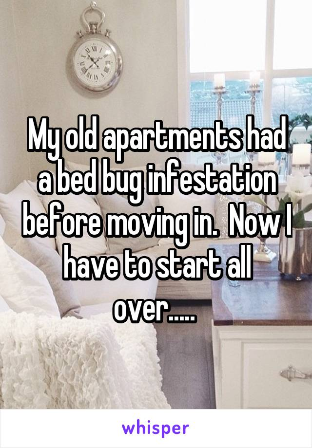 My old apartments had a bed bug infestation before moving in.  Now I have to start all over.....